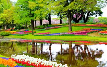 Visiting the Keukenhof